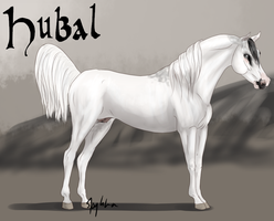 Hubal by Meykka