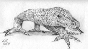 Komodo Dragon by philippeL