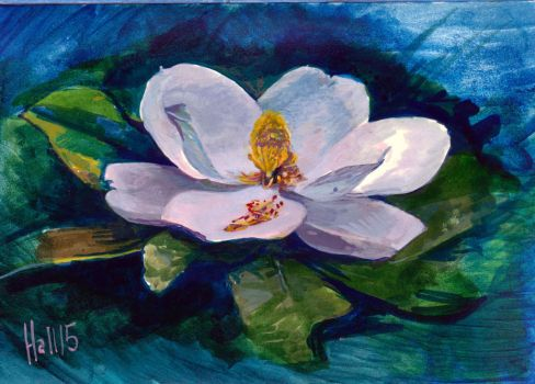 magnolia by charles-hall