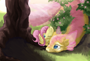 Fluttershy's Dragon by Bedupolker