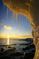 Icicles of Midas by tfavretto