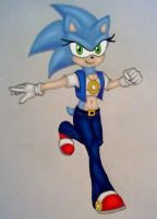 Gender Bender: Sonic by GothNebula