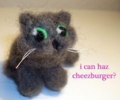 I Can Haz Cheezburger? by StCoraline