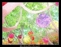 Magical Garden by behindherheart