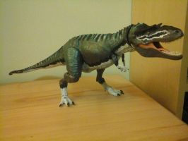 Gorgosaurus repainted (revised) by Emperor-Zinyak
