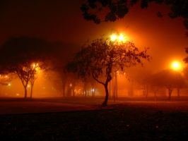 Illuminated place by inverno
