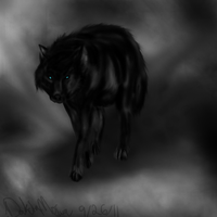 Black wolf by NeonDefined