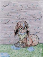 In the Pouring Rain by UmbreonShadowWolf004