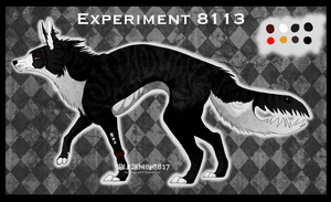 Experiment 8113 *CLOSED* by Yunarii