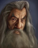 Gandalf Caricature by 8kx