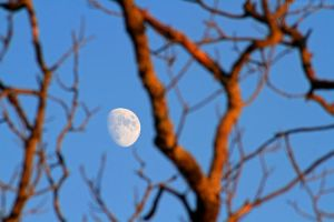 Moon at sunset by FlorentCourty