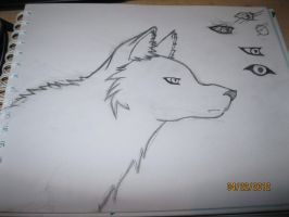 Wolf anime sketch. by T400naruto
