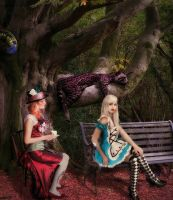 Another Wonderland Picture by Artelanas