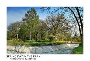 SPRING DAY IN THE PARK by mitatos