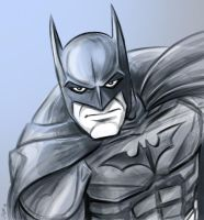 Batman the Dark Knight. by scootah91