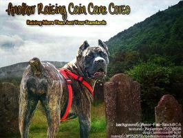 Raising Cain Cane Corso by BerlinlavsMarie