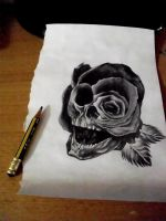 Skull Rose by blamd