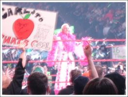 Ric Flair by bluetogray