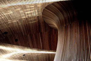Welsh Assembly Ceiling 05 by l8