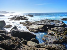 Spanish Bay, 17 Mile Drive S2 by nyann