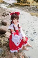 Touhou Project - Reimu by wisely84