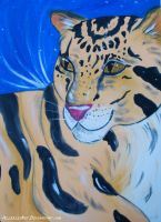 Clouded leopard by AllerleiArt