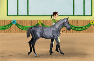 Mountainview's 3rd Annual Horse Show - Universe by SunshineElite