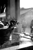 Water Fountain Dragons by Bjartell