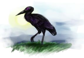 Violet Eyed Black Heron by The-Corvus-Corax