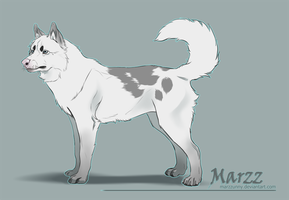 Alterego - Canine form by Marzzunny