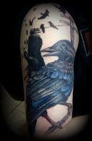 Crow and Cash Cover Up by MercuryDemosthenes