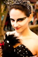 Black Swan 1 by BertLePhoto
