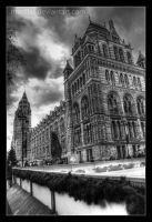 Natural History Museum by Morillas