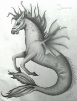 Hippocampus aka Sea Horse by Amzylee
