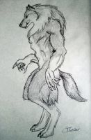 Warewolf by cabs-bodge