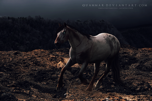 kiriban: sold to the man in black by Quammar