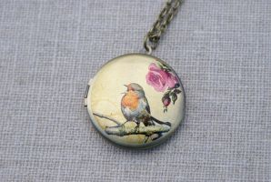 Singing Robin Locket Necklace by foowahu-etsy