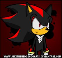 Shadow the Hedgehog FTW by AlexTHF