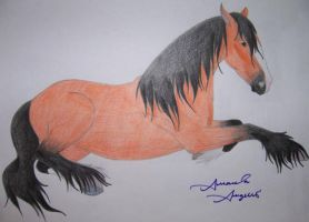 Shire Horse by Raiha