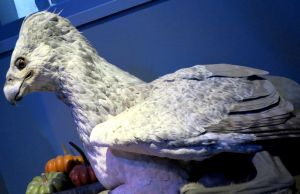 buckbeak the hippogriff  harry potter.tour watford by Sceptre63