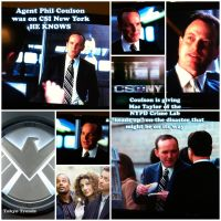 CSI : COULSON by Tokyo-Trends