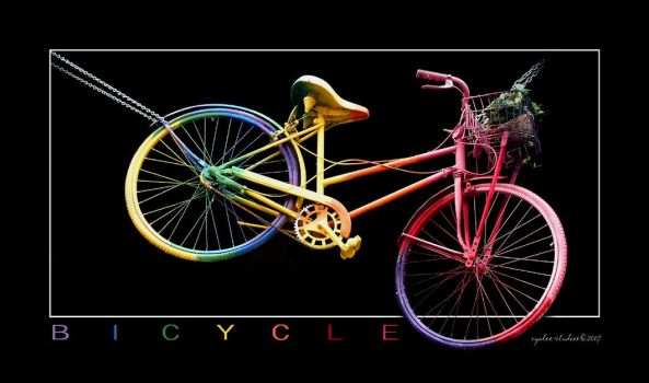 Bicycle by cynlee