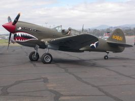 P40 Warhawk by mean
