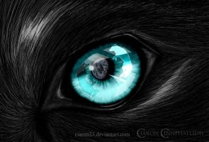 Eyes From Within by Ciaron23