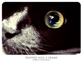 Trapped into a frame by frozenration