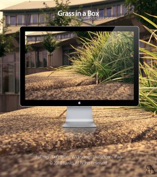 Grass in a Box by Rawio