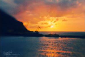 LensBaby: Sunset -and a crane- by LoganX78