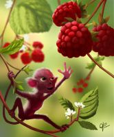 Raspberry Monkey by jjpeabody