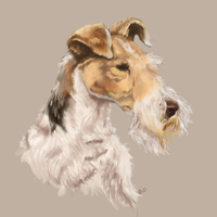 Fox Terrier by Rachaechae