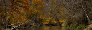 Fall Creek by UriahGallery